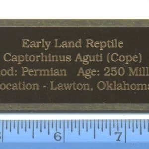 Brass-Engraved Information Plates