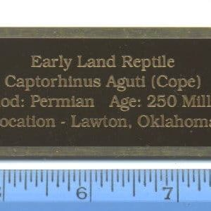 Brass Identification Plates