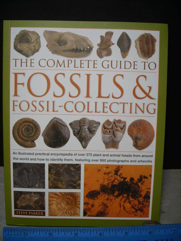 Best Selling Fossil Books
